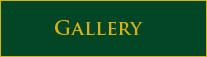 gallery-btn